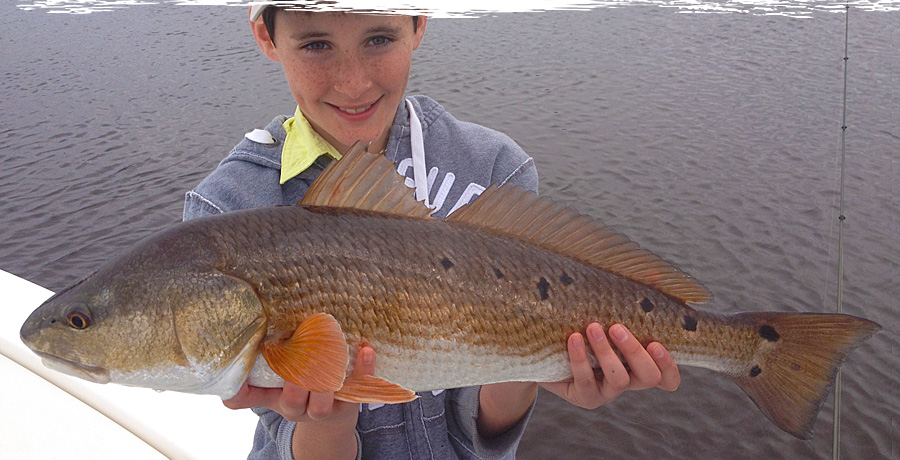 Fishing charters st augustine florida for Fishing charters st augustine